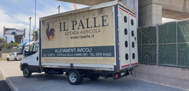 IVECO Daily 35C15 Cassone Centinato Euro 5b pieno